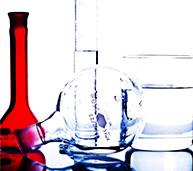 Біотехнологія (бакалавр)
