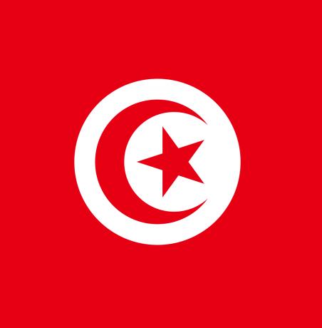 Літня програма стажування у готельно-ресторанних комплексах Тунісу